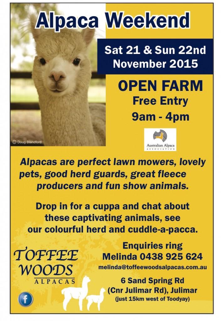 toffee alpaca weekend